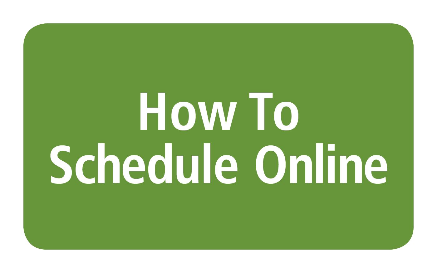 how to schedule online.png